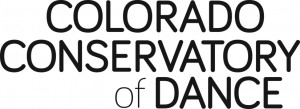 CCD logo black